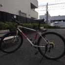 故障中 BRIDGESTONE 自転車 24インチ