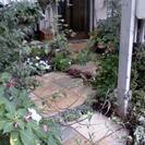 植木屋のグリングリン お庭周りのことならお任せください。