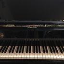 ピアノ(ソルフェージュ付き)◎¥6,000~/月4回~3回(個人レ...