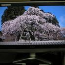◇シャープ32型TVデジタルハイビジョン LC-32E5 アクオス...