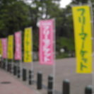 ◎7月16日(日)「イトーヨーカドー和光店屋上 フリーマーケッ...