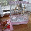 鳥かご おもちゃ アクリルケース付き