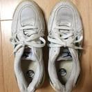 中古 ミズノ 運動靴 (上履き) 24cm