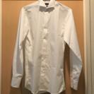 ウイングカラーシャツ 結婚式