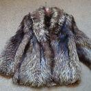 シルバーフォックスのコート