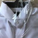 結婚式用ワイシャツ