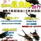 世界の昆虫展 2017 IN PET SHOP JII'S