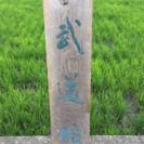 武道館 篆刻てんこく  時代物 逸品