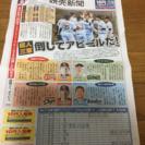 熱闘アイランドリーグ 激安10円入場券&グッズ割引き券