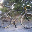 ロードバイク(RAYCHELL+、2×7速)