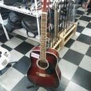 HONEY BEE W-15/WRS アコースティックギター