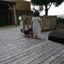 玉名市周辺で幼児を遊ばせる場所教えて!!