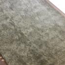 ニトリ 薄手のカーペット ラグ 緑色 クリーニング済み