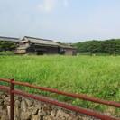 【畑 水田 農業に興味のある方に貸します 売ります】