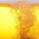 ビール好きの女性!必読!!