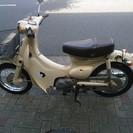 【中古】リトルカブ ホンダ 50cc プロ整備・3か月保証