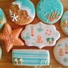 8月の夏アイシングクッキー - 習志野市