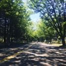 【女性限定】駒沢公園ウォーキングしましょう〜