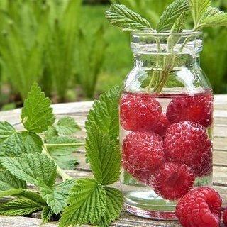季節の果物とハーブを蒸留しよう♪キッチン蒸留®体験会セミナー