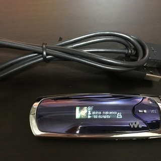 SONY ウォークマン NW-S706F