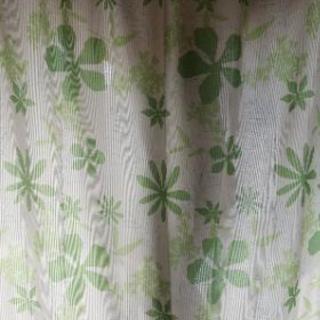 🌿涼し気なリーフ柄の素敵な緑のカーテン🌿