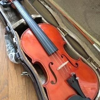バイオリン 3/4 スズキ
