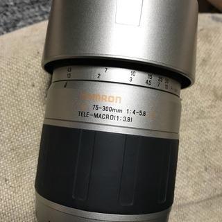 TAMRON AF 75-300mm f4-5.6 MACRO