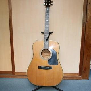 Morrisのアコースティックギタ...