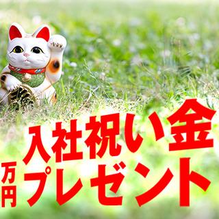 《 柏 》大手量販店ケータイPRスタッフ|未経験大歓迎!祝金1万円...