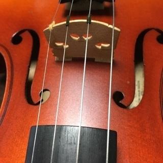 バイオリン 1/2  スズキ