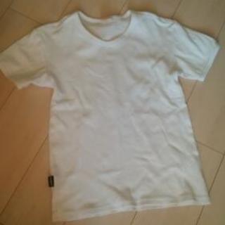 AVIREX  Vネックシャツ 白 Sサイズ