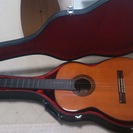 suzuki  violin製   ギター