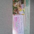 富士サファリパーク新一年生親子ペアご招待券