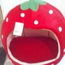 [値下]イチゴのベット