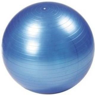 簡単なバランス運動から高度な体勢まで全身の運動をサポート …