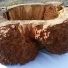 自然木 幹アート
