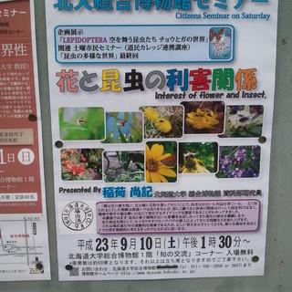 「花と昆虫の利害関係」講演◎北大総合博物館にて開催!