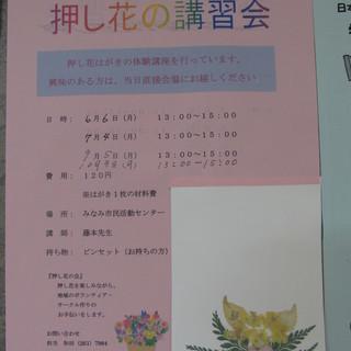 【みなみ市民活動センターで、押し花はいかがですか?】 (阪東橋駅)
