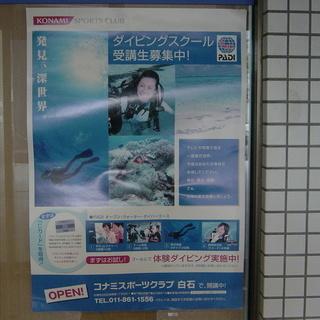深世界を探検しよう!ダイビングスクール生徒募集!