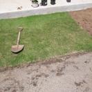 芝生を差し上げます