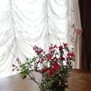 宮崎でピアノ教室をしています。1日1組限定【プレゼント・レッスン】...