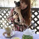 ペットカフェ四季彩食ole(オーレ)がオープンしました。