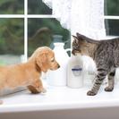 飼い主様に代わってペットのお世話を致します。