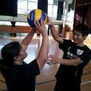 日本初のバレーボール通信指導 サービス開始!
