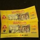 富士急ハイランド フリーパス券 2枚