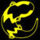 爬虫類ショップWILDMONSTER