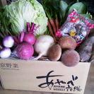 ■京都丹波の農家さん野菜詰合せ■2500円/送料込み