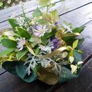 季節のグリーンと少しのお花で花遊びしてみませんか。