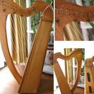 小型アイリッシュハープ(19弦)ケース付