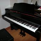 リリーベルピアノ教室 荻窪